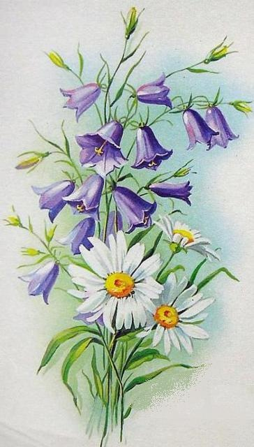 Колокольчики цветы открытки 28