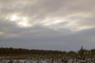 Выездной фотограф Gennady Tigrov - Воронеж